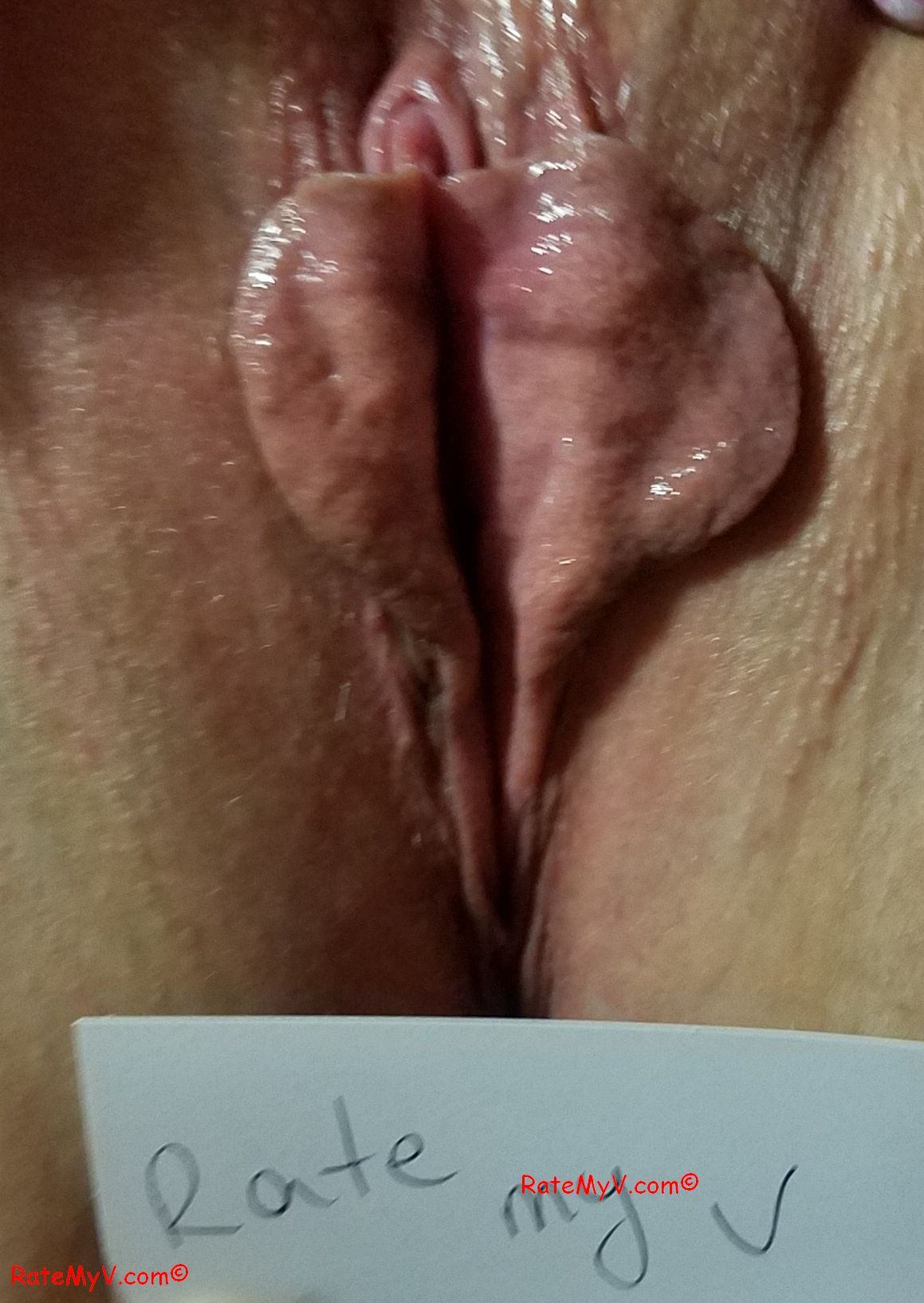 Rate My Pussylips
